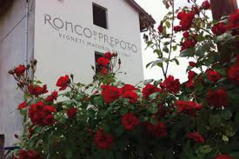 Azienda Agricola in vendita a Prepotto, 1 locali, Trattative riservate | Cambio Casa.it