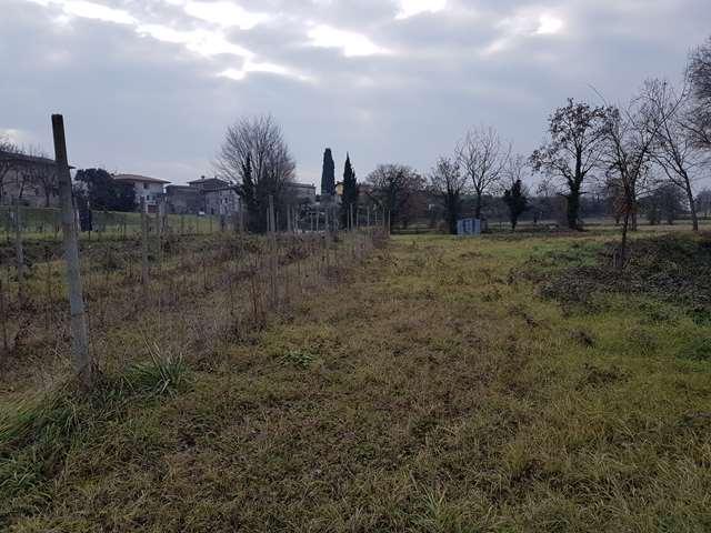 Manerba del Garda vendesi terreno agricolo Rif.8963991