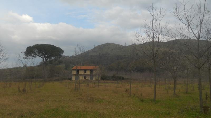 Foto - Terreno In Vendita Teano