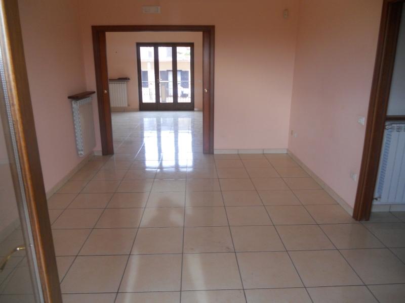 Appartamento affitto LUSCIANO (CE) - 4 LOCALI - 130 MQ - foto 3