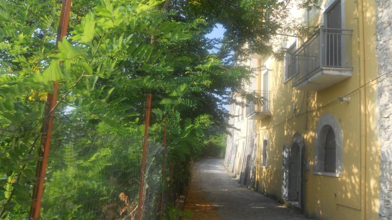 Casa Indipendente vendita SEPINO (CB) - 5 LOCALI - 140 MQ