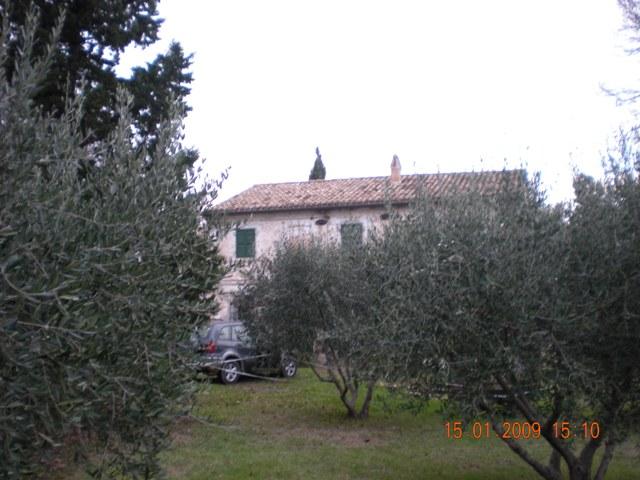 Villa vendita SENIGALLIA (AN) - 300 MQ - foto 4
