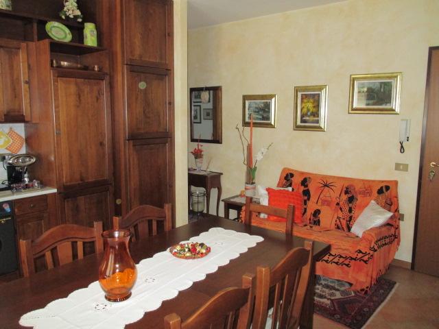 Appartamento vendita SENIGALLIA (AN) - 99 LOCALI - 65 MQ