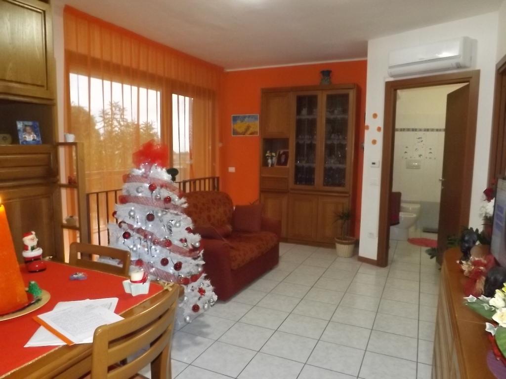 Appartamento vendita SENIGALLIA (AN) - 40 MQ - foto 4