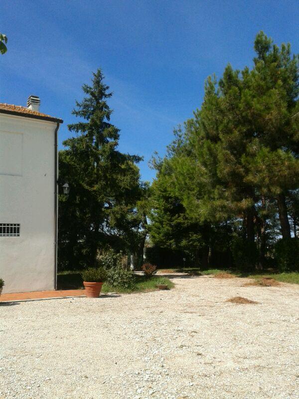 Rustico vendita MONTEMARCIANO (AN) - 99 LOCALI - 130 MQ