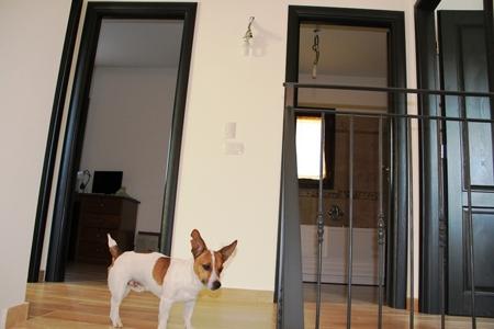 Casa Indipendente vendita ORVIETO (TR) - 7 LOCALI - 180 MQ