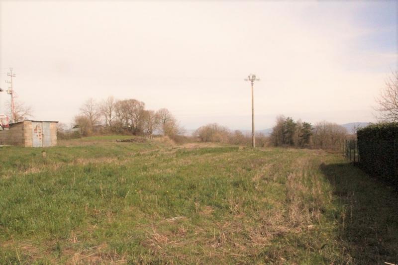 Terreno in Vendita a Castel giorgio