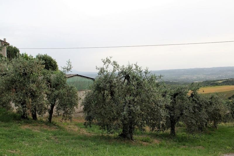 Terreno in Vendita a Montecchio