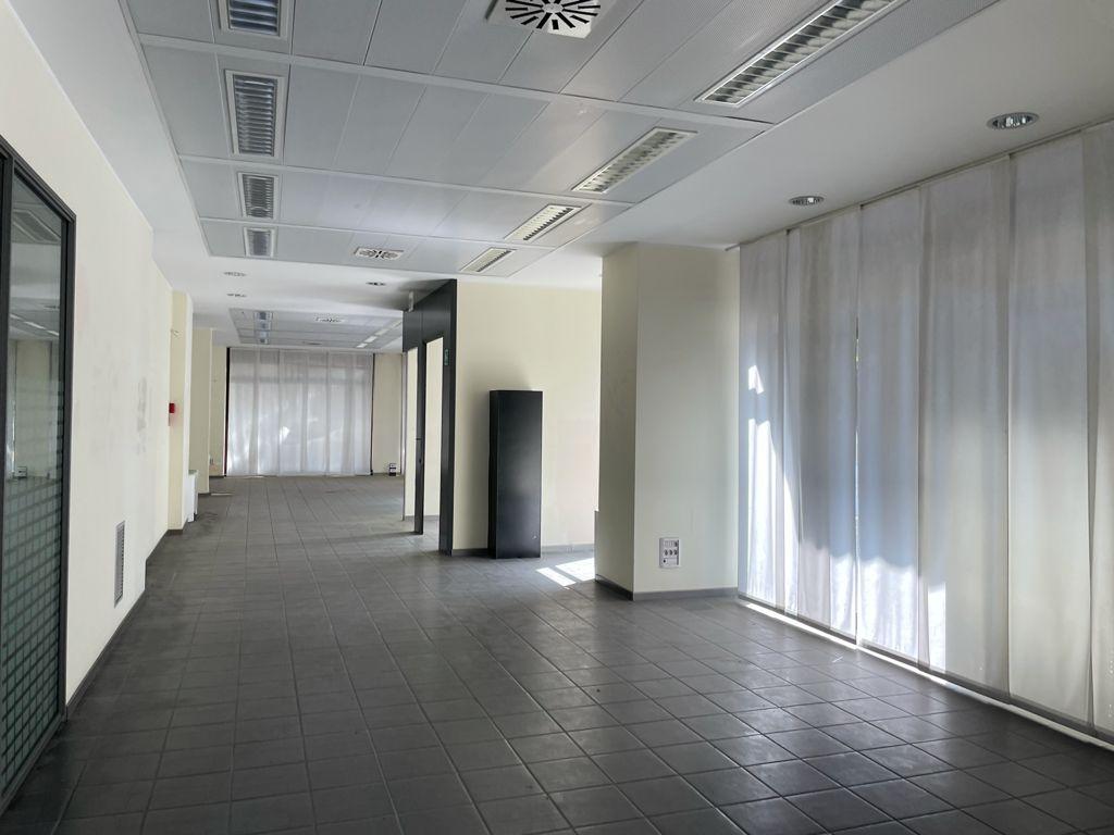 Negozio / Locale in affitto a Udine, 4 locali, prezzo € 2.500   CambioCasa.it