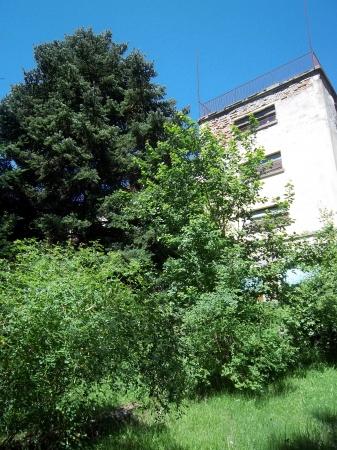Stabile / Palazzo in discrete condizioni in vendita Rif. 4049655