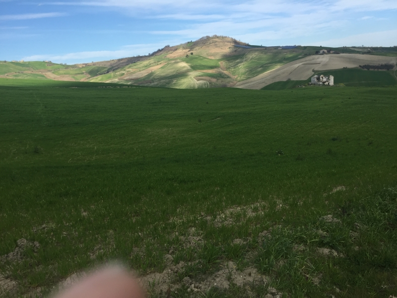 Azienda con 7 ettari di terreno agricolo Rif. 7011730