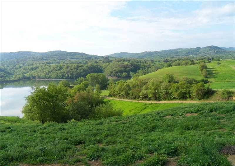 10 km. da Arezzo vendesi azienda agricola 1200 Mq Rif. 4994582