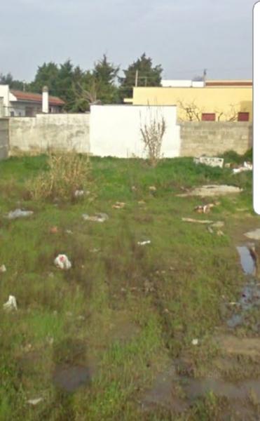 Terreno residenziale 560 mq  in Vendita a Torchiarolo zona Lendinuso Rif. 10237134