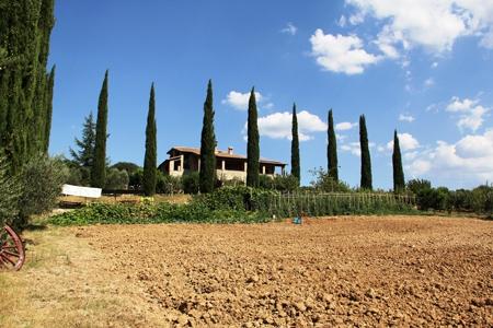 Baschi - Ampio casale (residence) con numerosi appartamenti, ristorante, piscina e 4 ha di terra in vendita a pochi chilometri da Orvieto Rif. 4989939