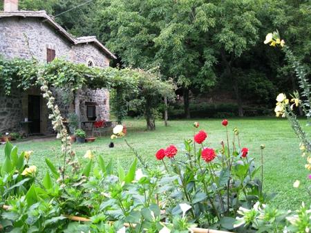 Orvieto (Rocca Ripesena) vendesi agriturismo con area campeggio Rif. 4989496