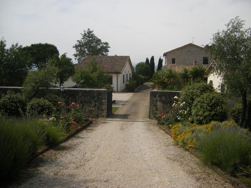 Azienda agricola in vendita nel comune di Baschi Rif. 4987616