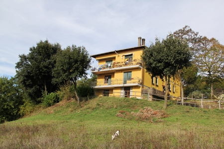 Orvieto - vendesi estesa azienda agrituristica di 81 ha di terreno in posizione panoramica sulla rupe di Orvieto Rif. 4991973